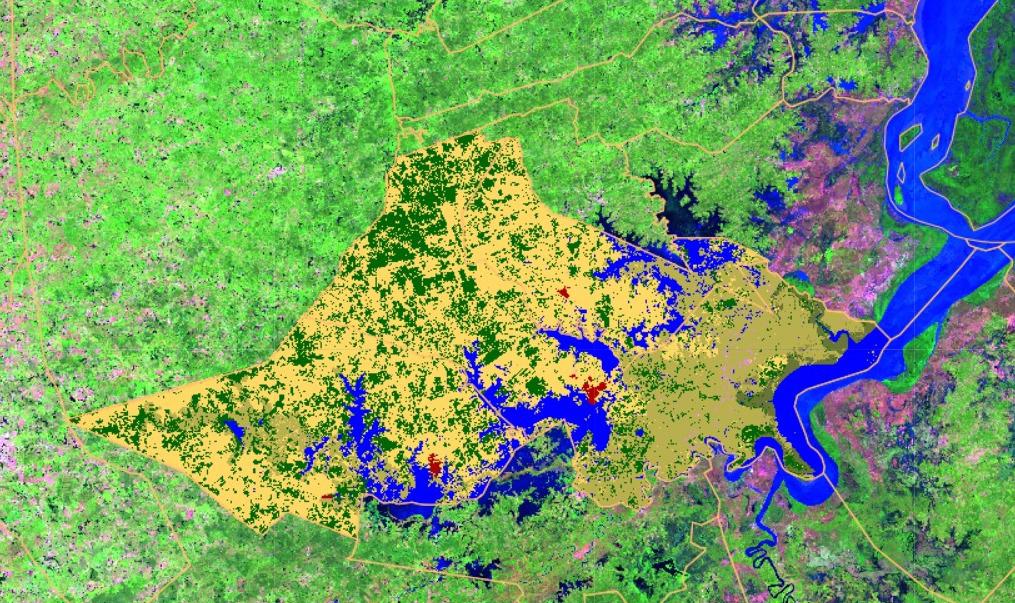 para pasto e agricultura, em amarelo